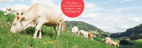 Zum Projekt - Schwarzbergerhof